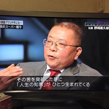 テレビ番組