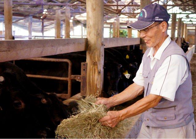 牛の世話をしている門田さん